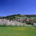 Siegersdorf